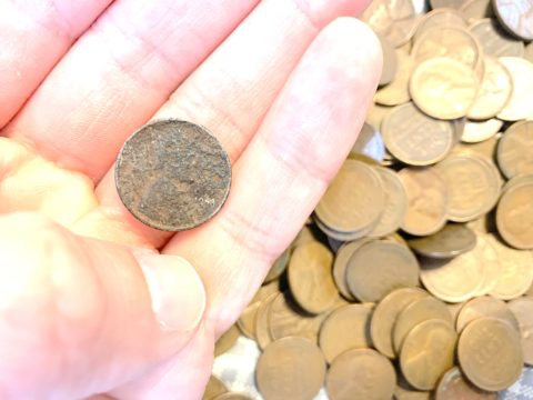 This wheat penny is a cull coin due to its condition