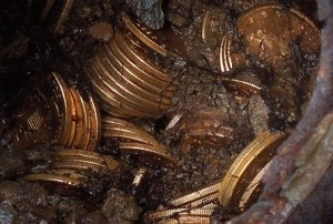 Saddle_Ridge_Hoard_coins_and_dirt