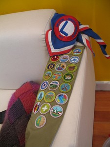 merit badge requirements collecting coin boy badges scout thefuntimesguide coins scouts